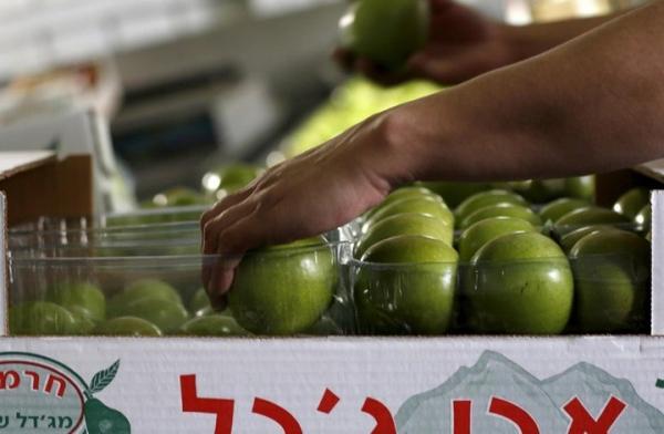 انطلاق أول شحنة تجارية من المستوطنات الإسرائيلية إلى الإمارات
