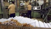 هل تنجح الحكومة الشرعية في انتزاع شركة «التبغ» ثاني أكبر مصدر لإيرادات الحوثيين ؟