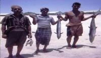صحيفة لندنية : إنتاج الأسماك في اليمن يهوي بأكثر من 65%
