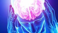 تطبيق جديد للجوال يعمل على تحسين تركيز دماغ الإنسان