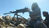 الجيش اليمني يعلن تحرير مناطق جديدة في البيضاء