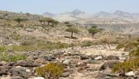 """""""مجلة إيطالية"""" تكشف عن احتلال الإمارات 15 منطقة في قلب جزيرة """"سقطرى"""" اليمنية"""