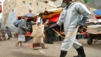 أعداد الموتى بلغت 3 أضعاف وشائعات عن قتل المصابين.. هل يخفي الحوثيون الحجم الحقيقي لكورونا في اليمن؟