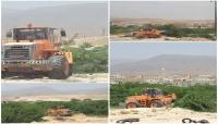 شاهد بالصور.. حملة شبابية بالمهرة لإزالة أشجار السيسبان من الشوارع