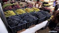 """مزارعو العنب في اليمن .. يكافحون وسط أزمتي """"الوقود والحرب"""" (ترجمة خاصة)"""