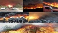 ارتفاع ضحايا حرائق الغابات في الجزائر إلى 42 قتيلًا